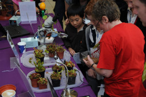 Children feeding the carnivorous plants