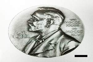 Nobel prize printed with 2D material inks