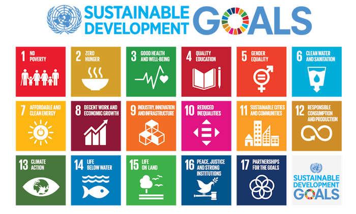 Sustainable Development Goals inforgraphic