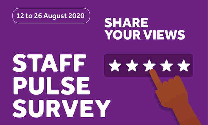 Pulse Survey 2020